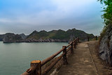 Path on Cat Ba Island.
