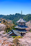 Yoshinoyama, Japan at Kinpusenji Pagoda