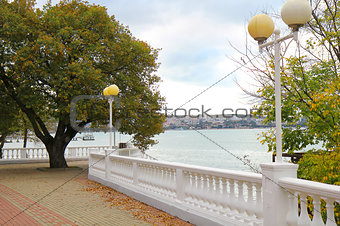Site of seaside quay with a lonely tree. Gelendzhik. Russia.