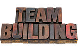 team building in wood type