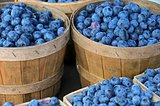 blueberries in baskets