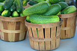cucumbers in bushel basket