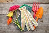 Gardening tools, gloves and gerbera flowers