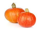 Two ripe small pumpkins