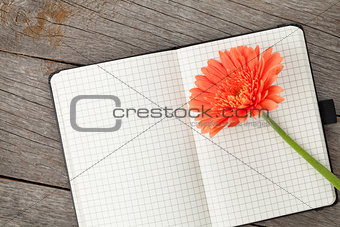 Blank notepad and orange gerbera flower