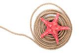 Starfish over ship rope