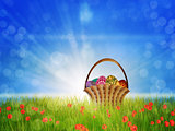 Basket of eggs on poppy field