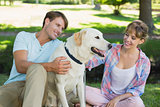 Happy couple sitting with their labrador in the park