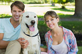 Happy couple sitting with their labrador in the park smiling at camera