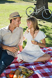 Cute smiling couple drinking white wine on a picnic