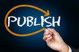 Businessman writing the word publish