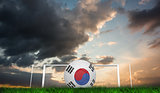 Composite image of football in south korea colours