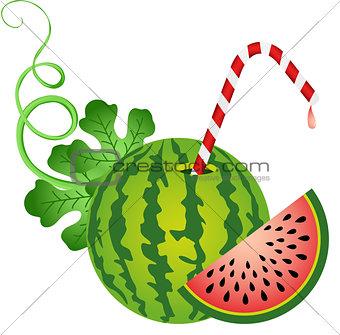 Watermelon with Straw
