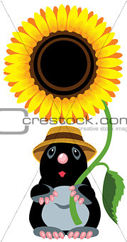 mole holding sunflower