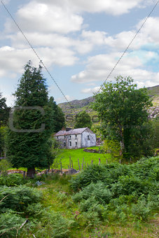 abandoned Irish farmhouse ruin