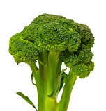 Broccoli on white background.