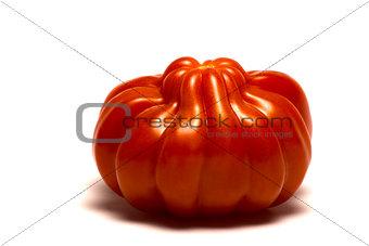 fleshy tomato