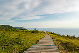 Skyline Trail boardwalk