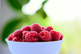 Big Pile of Fresh Raspberries in the Bowl on Green Background