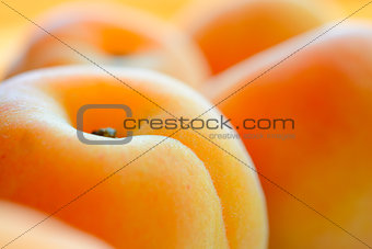 Closeup Image of Ripe Juicy Apricots