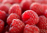 Closeup Image of the Juicy Raspberries