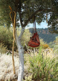 Traveler backpack in olive tree shade
