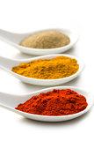 various spicy powder