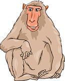 macaquee animal cartoon illustration