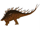 Kentrosaurus Side Profile