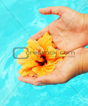 Beautiful female hands in the pool