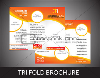 abstract tri fold brochure concept