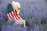 Flag on chair in flowers