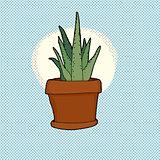 Small Cactus Houseplant