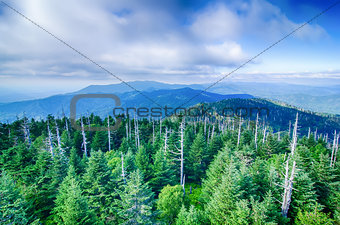 A wide view of the Great Smoky Mountains from the top of Clingma
