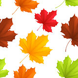 Autumn leaves pattern.