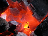 Embers close-up