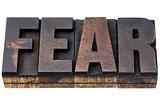 fear word in wood type