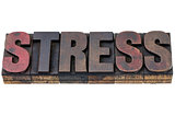 stress word in wood type