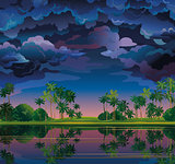 Tropical landscape with palm and stormy clouds.