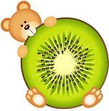 Teddy Bear Eating Kiwi Slice