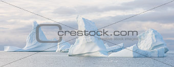 Beautiful icebergs