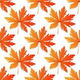 Pretty colorful autumn leaf seamless pattern
