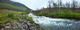 Summer river panorama (Norway).