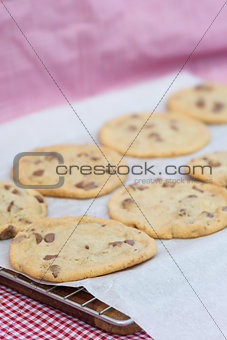 Beautiful fresh hand made chocolate chip cookies