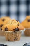 Tasty home made chocolatechip muffins