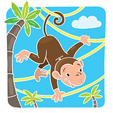 Little funny monkey