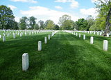 Arlington National Cemetery 2010