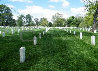 Arlington National Cemetery 2010