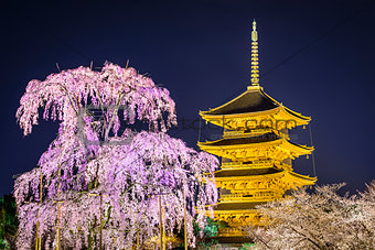Todai-ji Pagoda in the Spring