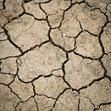 Dried cracked earth soil
